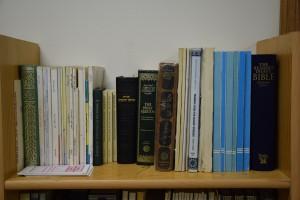 Mother Mosque, diverse bookshelf